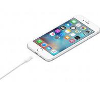 Apple Lightning to USB 1 m (MD818ZM)